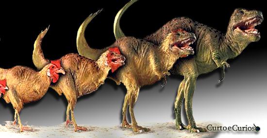 Engenharia genética reversa - Criando dinossauro Chickenosaurus