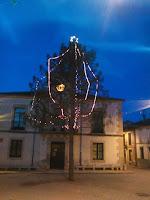 Pino-Navidad3