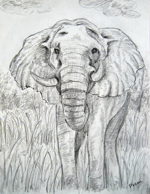 Sketch of Elephant
