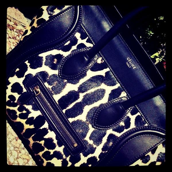 celine trio bag price - The Celine Mini Luggage Tote in Ponyhair Leopard Print! | The Bag ...