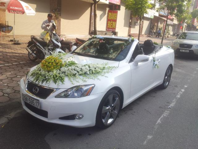 cho thuê xe hoa cưới mui trần Lexus is250 giá rẻ tại Hà Nội