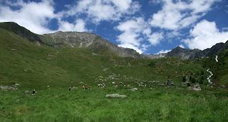 trail verbier saint bernard