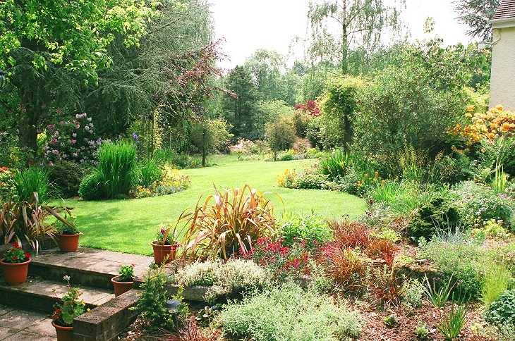 Jennyb 39 s edible and visual gardening page for Garden design visualiser