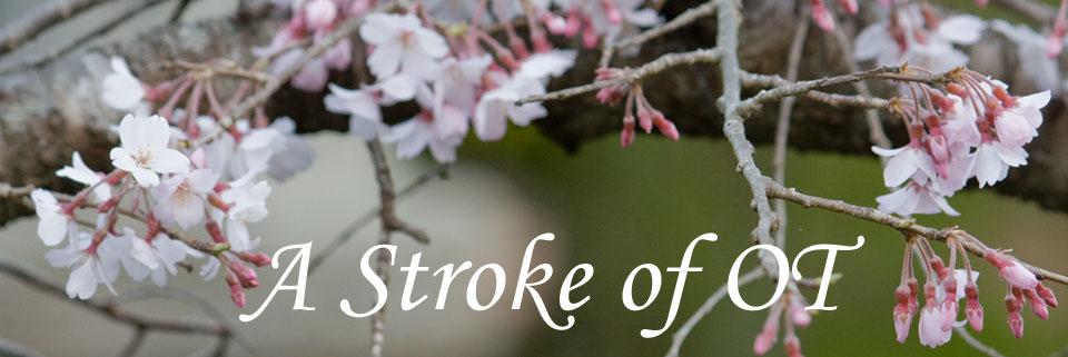 A Stroke of OT