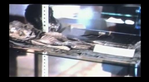 Divulgadas fotos inéditas de suposto cadáver extraterrestre de Roswell