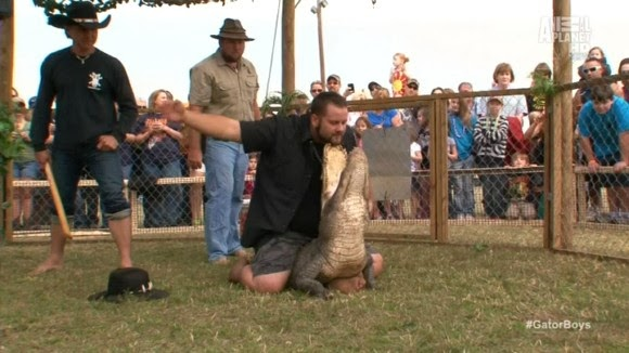 the gator boys tackle nuisance calls and donate gators to a wildlife