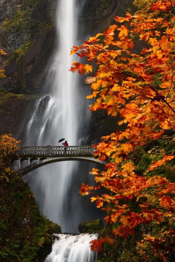 ===Arañarte el Alma=== Fotos-de-cascadas-en-paisajes-naturales-waterfalls-and-amazing-natural-landscapes-r%C3%ADos-rivers
