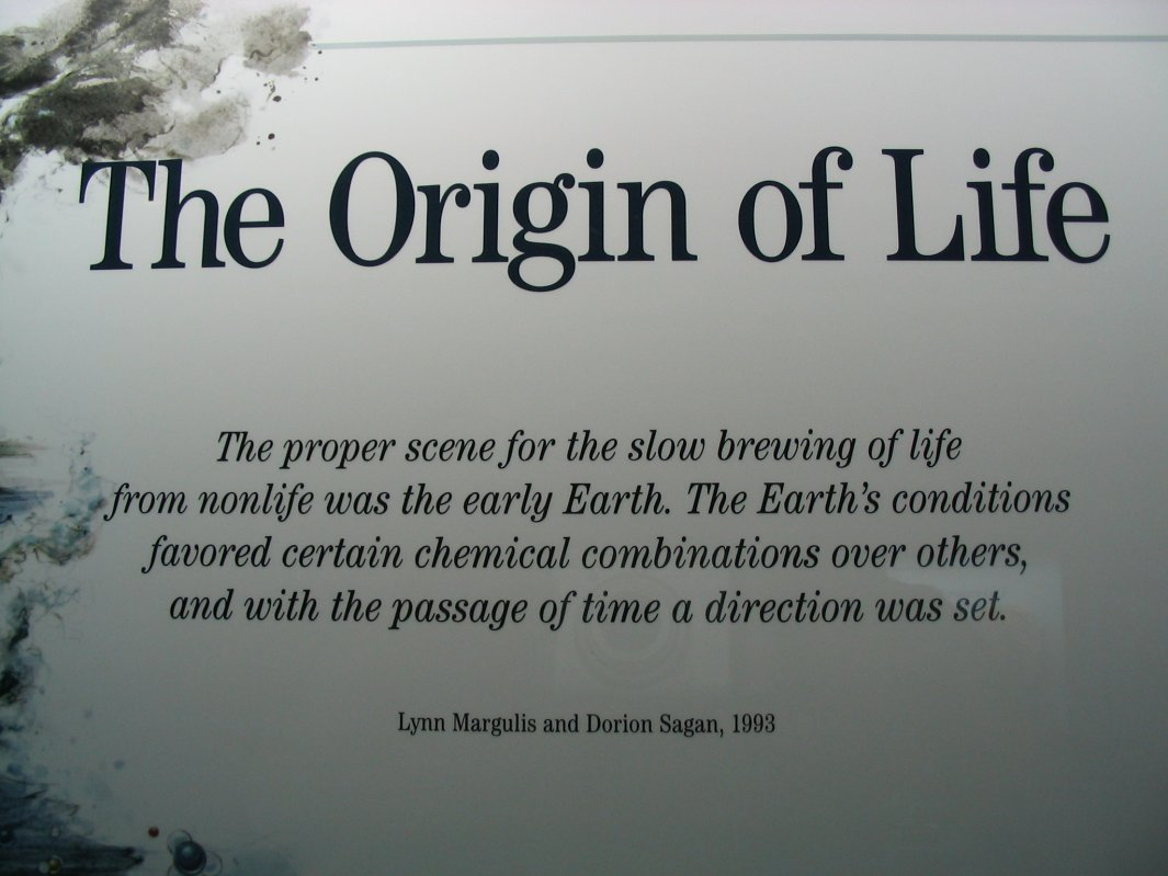 an analysis of various theories of the origin of life on earth
