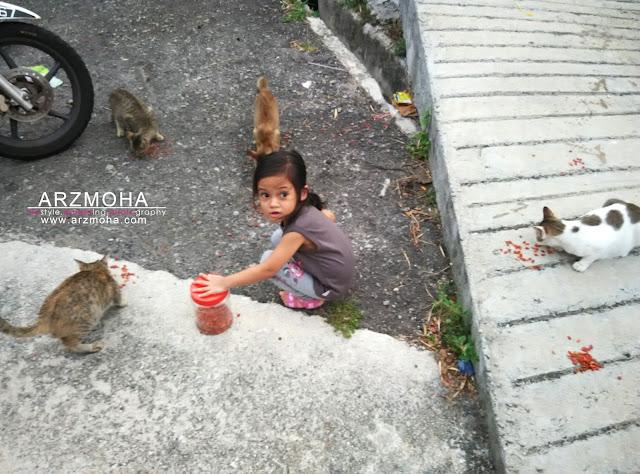 tips ajar anak suka kucing, anak dan kucing, kids and cats, didik anak sayangi haiwan,