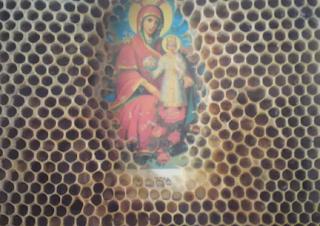 29.3.16-Κλιματική αλλαγή. Ξηρασία-μέλισσες-καρποφορία-εκτροπή Αχελώου και...