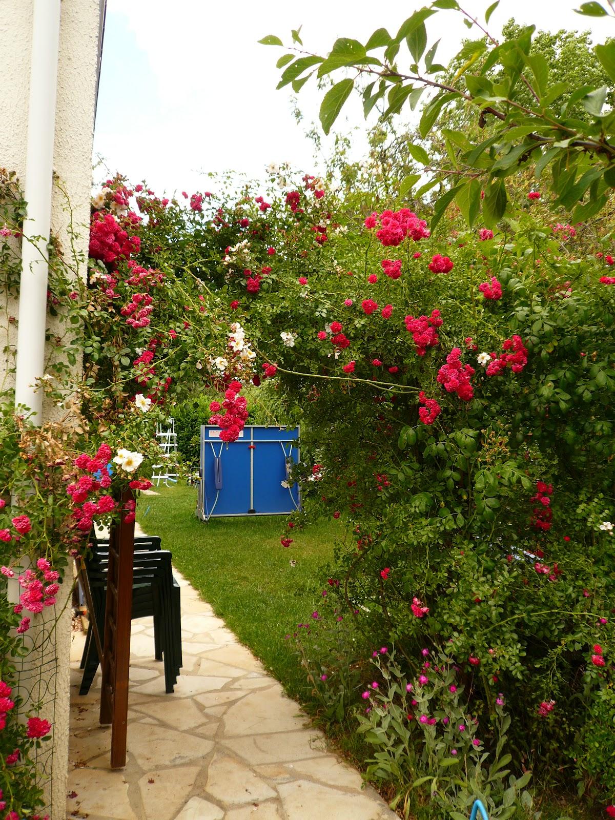A vendre maison kaufman 100 m2 saint germain les corbeils for Decoration jardin 100 m2