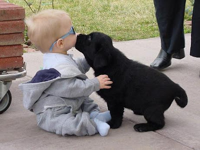 Kids with pets pictures to download