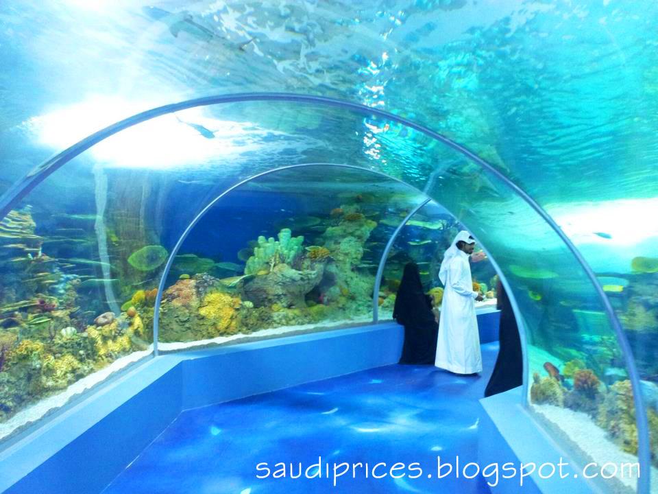 Fakieh Aquarium Pictures