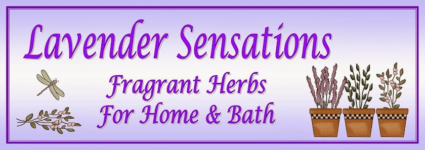 Lavender Sensations by Gloria Hander Lyons