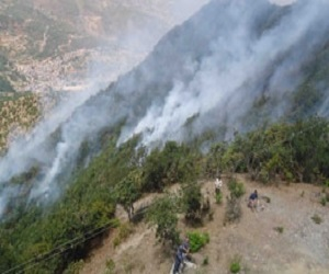 Gulmi_Nepal_Forest_fire_photo