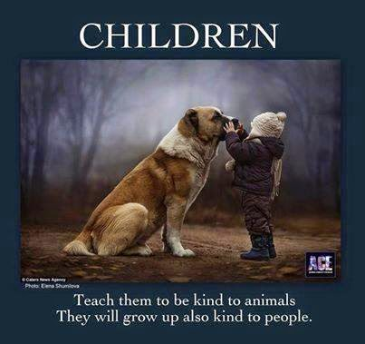 Of Animal Love Teaching Children Kindness Towards Animals Best Love Animal Quotes