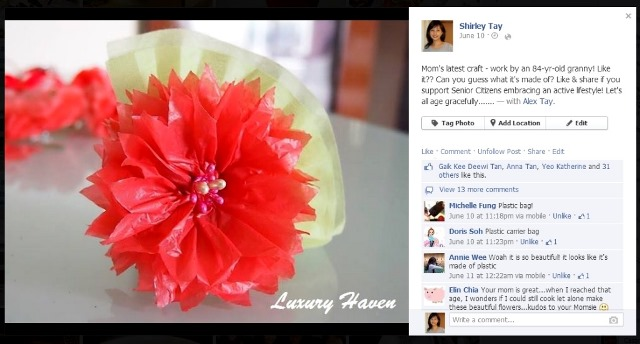 mothers day diy plastic carnation flower facebook