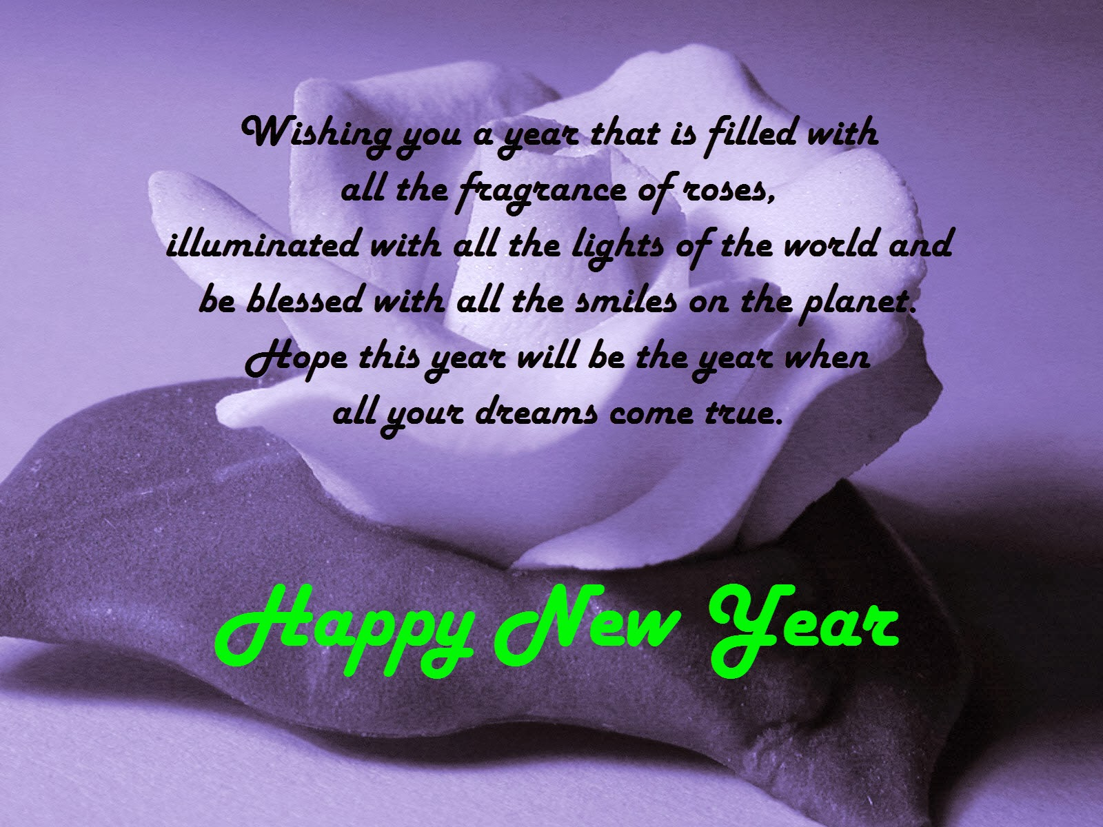 New Year Wishes For Lovers 5 Best New Year Wishes