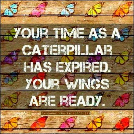 .Your wings are ready.