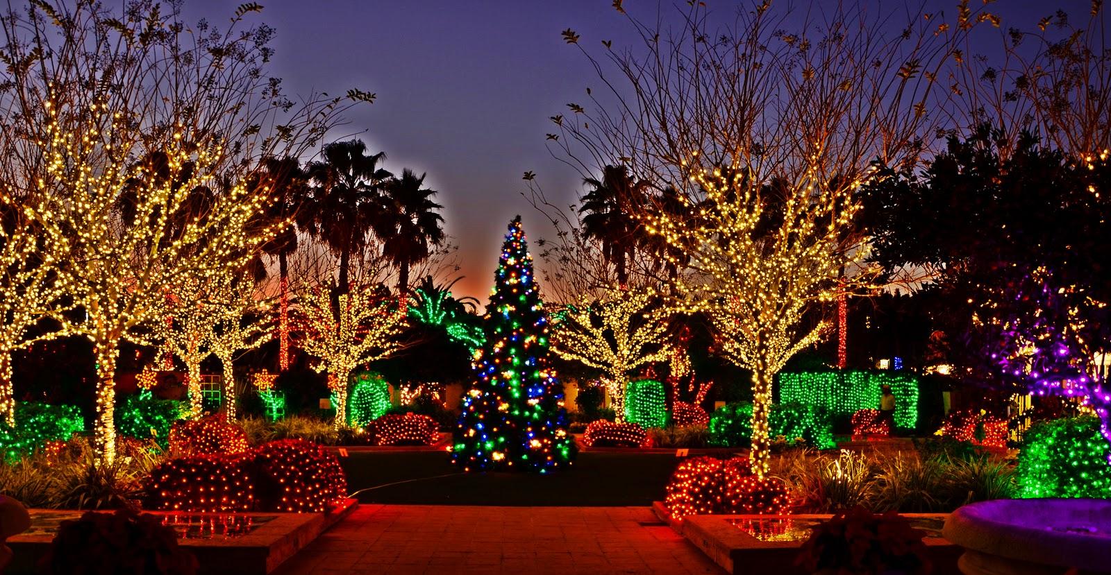 Dina 39 s city wildlife adventures florida animals light up - Florida botanical gardens christmas lights ...