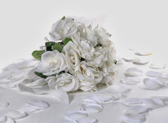 Beautiful White Rose Wallpapers Free Download