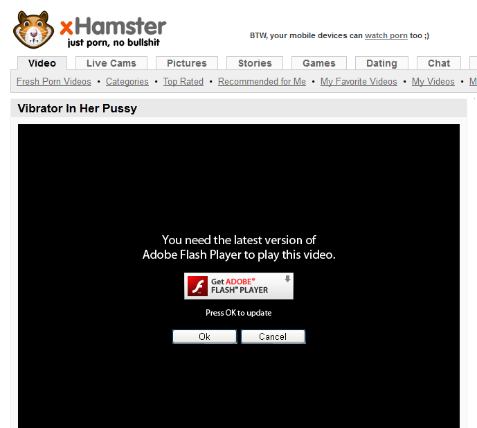 xhamster fake flash Amy Winehouse Picture & Photo Gallery