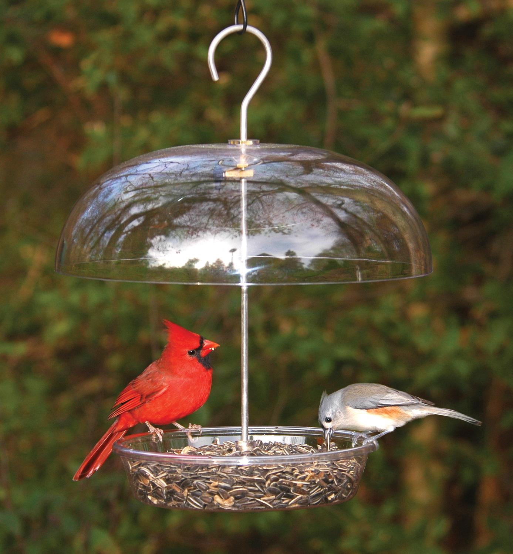 feeders unlimited off birds feeder downloadc bird
