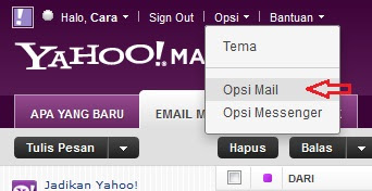 Setting Opsi Mail yahoo