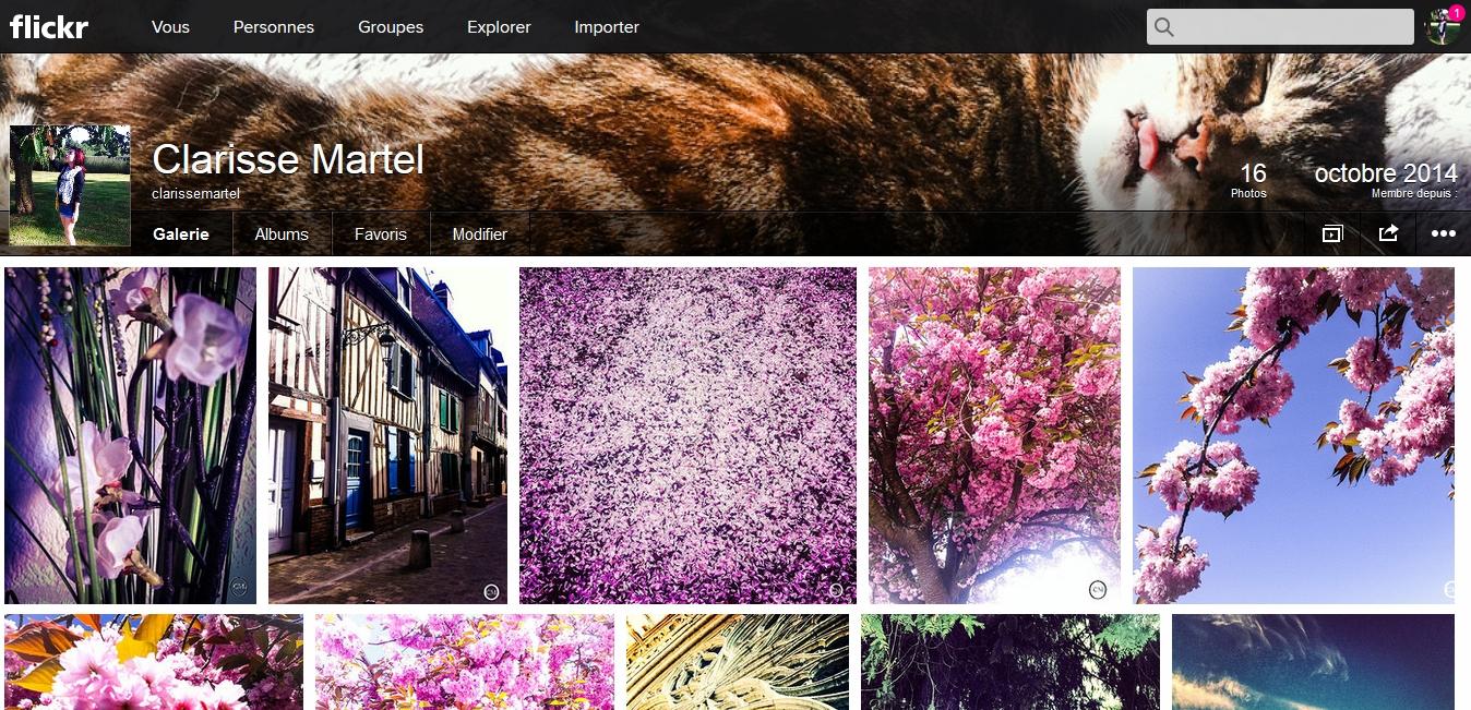 http://flickr.com/photos/clarissemartel