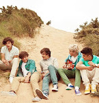 1dream, 1band, 1Direction