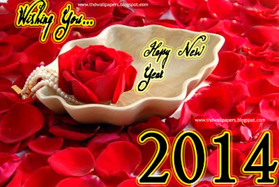 Beautiful Latest Happy New Years 2014 Photos