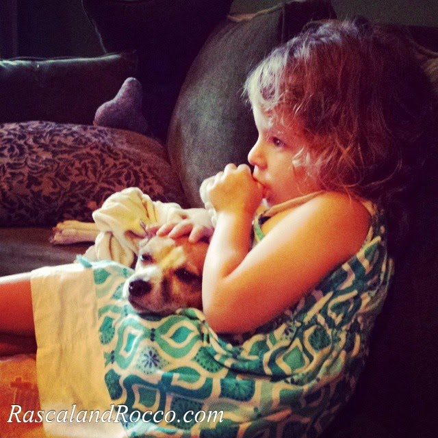 Little Things to be Thankful for #dogs #cute #baby #pets #girlandherdog #puppy #love