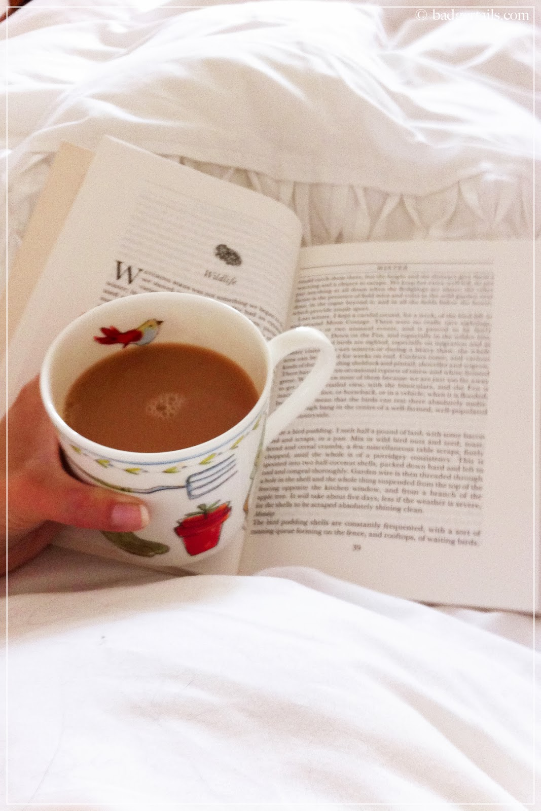 reading book in bed with cup of tea the magic apple tree susan hill