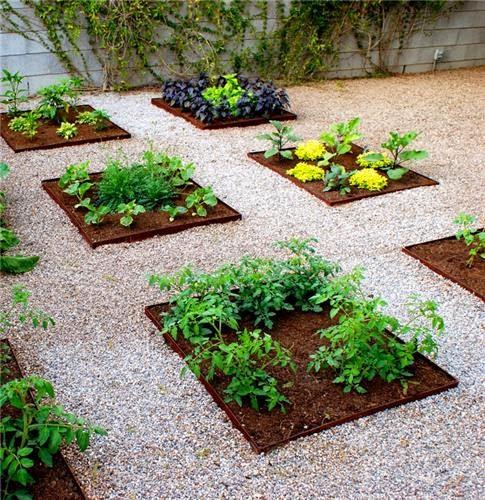 Vegetable Diseño Jardin Casa | Beautifull Diseño de Jardín Casa