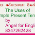 Simple Present Tense - Uses