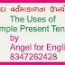 Simple Present Tense - Uses