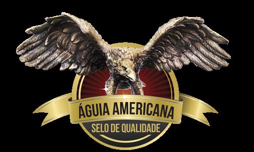Prêmio Águia Americana 2015