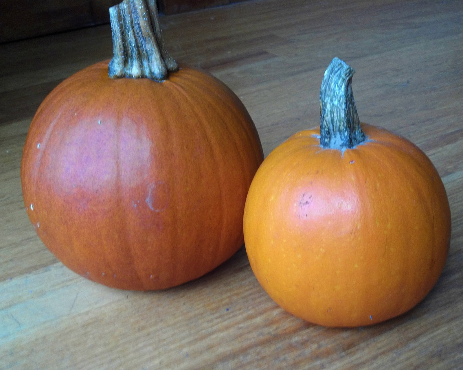 Pumpkin with sugar, baked in the oven: how to cook