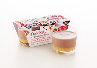 gluten free dairy free egg free puddings