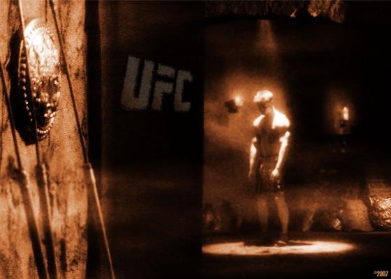 UFC Ultimate Fighting Championship el nuevo deporte sensación