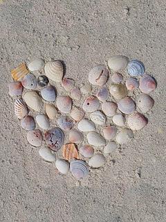 Srce od školjaka download besplatne pozadine slike za mobitele