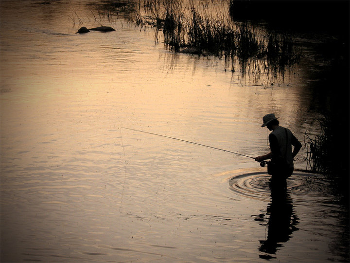 Fly fishing texas day dreaming for Fly fishing texas