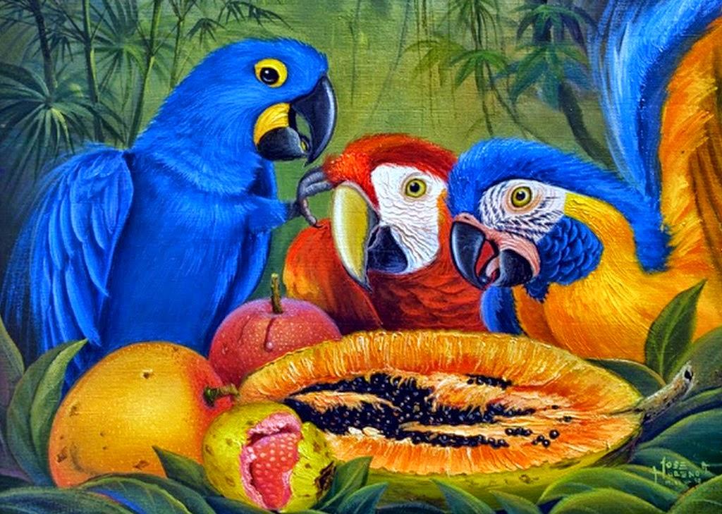 guacamayos-con-flores-y-frutas