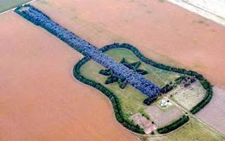 All things shaped like a Guitar