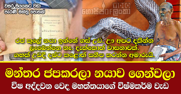 Newspaper interview with sri lankan Snake Doctor Ddharmadasa Kodikara