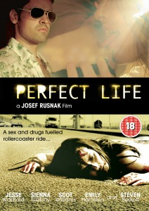 Perfect Life (2010)
