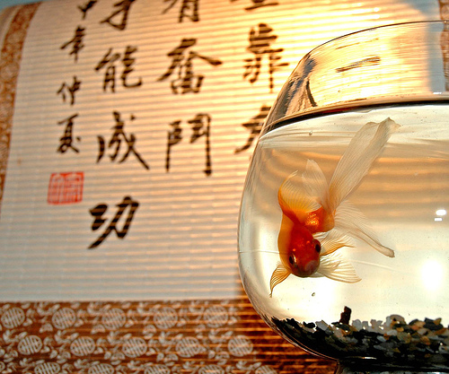 La presencia de los angeles feng shui para el area de la - Feng shui prosperidad ...