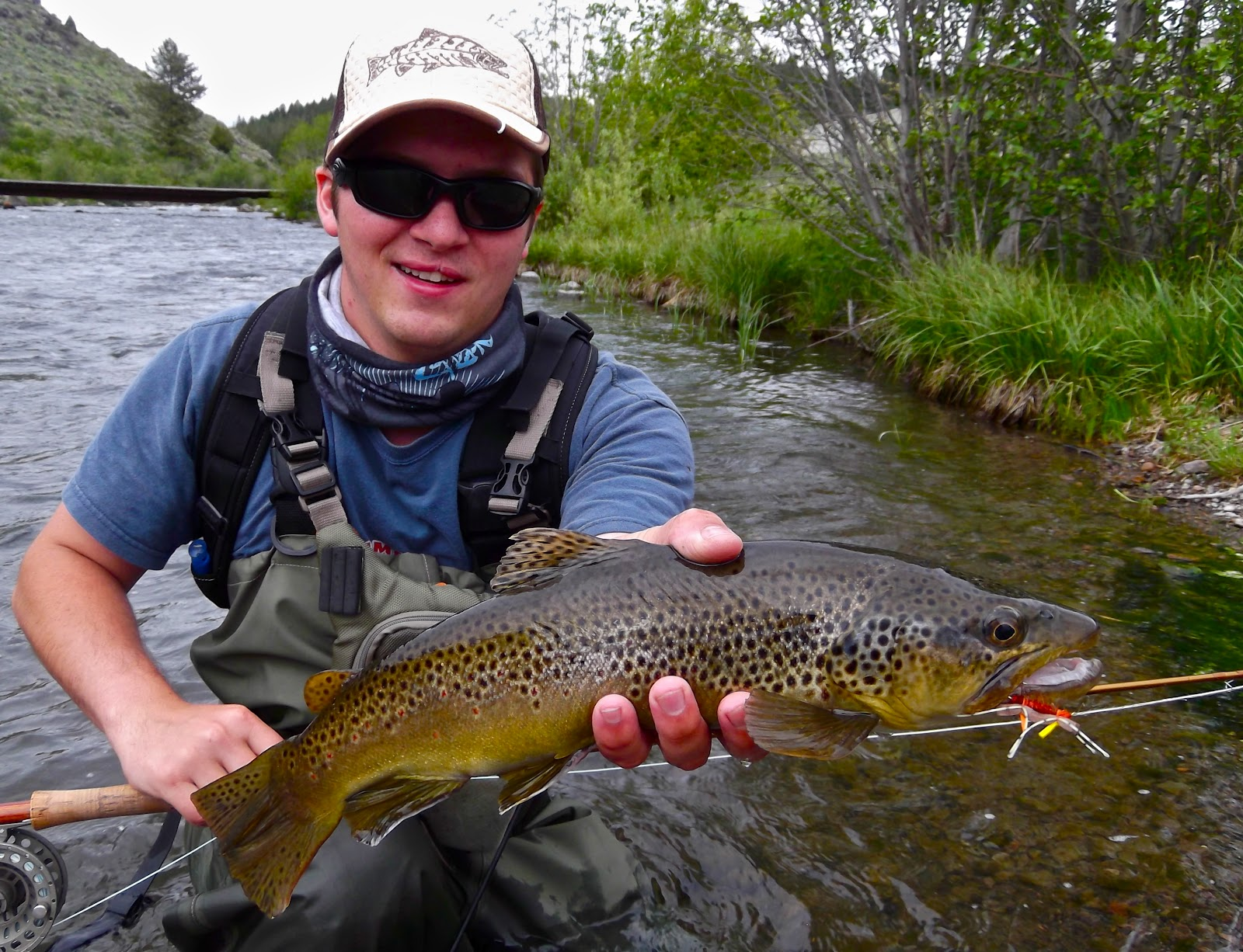 Central pa trout bum last trip of the month for Best fishing in pa