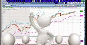 Belajar option trading pemula