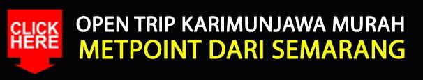OPEN TRIP KARIMUNJAWA MURAH METPOINT DARI SEMARANG